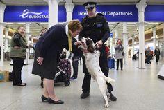 De patrulla en St. Pancras