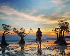 There is nothing better than watching a sunset over the ocean. Sometimes only lasts for a couple of moments. Photo by : @barli8js *Next Trip Amazing Sumba* Tgl 21 - 25 April 2017 . . #ExploreSumba #opentripsumba #tripsumba #tukangjalantrip #PesonaIndonesia #WonderfullIndonesia #ExploreNusantara #Liburan #Traveling #Travel #Tour #Tukang_Jalan #tukangjalan #TravelingGram #Indonesia #kelilingindonesia #Sumba #pantaiwalakiri #beach #bukitwairinding #pantaibwanna #Tarimbangbeah #JalanJalanMen