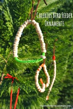 Love the idea of using pipe cleaners! Cheerios Bird Feeder Ornaments by FSPDT fun to make with the kids and then decorate tree inside or out Christmas Arts And Crafts, Preschool Christmas, Christmas Activities, Holiday Crafts, Fun Crafts, Christmas Holidays, Crafts For Kids, Christmas Ornaments, Preschool Class