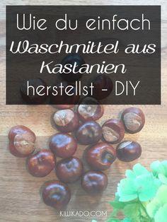 Kastanienwaschmittel - Ich zeige dir, wie du aus Kastanien ein ökologische und nachhaltiges Waschmittel herstellen kannst...