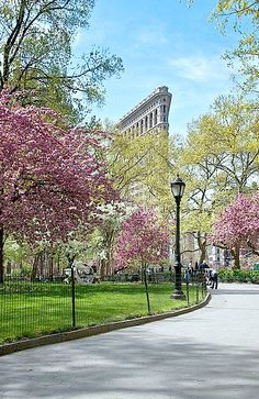 madison square park, nyc. one of my all time favorite places <3