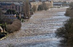 From Peregrine Falcons in Worcester. Viewing south, three foot waves & white water next to the Diglis Hotel today. Just to add the Diglis House Hotel is fully open for business. River Severn, Peregrine Falcon, Worcester, Waves, Falcons, Outdoor, Business, House, Outdoors