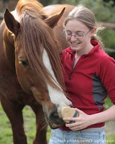 Good web resource on horse care and health