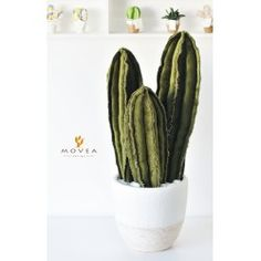 Tris Cactus artificiale in tessuto
