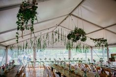 white roof marquee, vintage timber tables, festoon lighting, wooden padded folding chairs, white padded folding chairs, south coast weddings, marquee weddings, south coast party hire