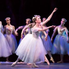Ballet Austin :: At the Ballet :: Giselle
