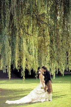 Dow Gardens- Wedding Willow!