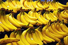 La banane - Les singes aiment les bananes!