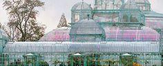 Visites des Serres Royales de Laeken