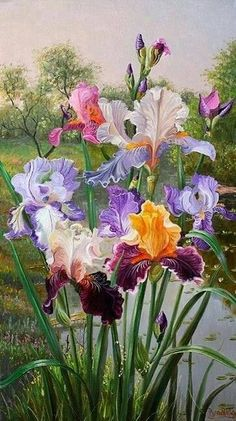 Iris art by Vladimir Ivanov Iris By The Water. Irises are one of my favorites! Iris are so beautiful in spring! So very pretty! Beautiful flowers from God ~ Wonderful picture from Vladimir Ivanov (artist). Artist: Vladimir Iva Flowers Garden of Love ~ Arte Floral, Watercolor Flowers, Watercolor Paintings, Iris Painting, Image Painting, Watercolor Ideas, Painting Flowers, Iris Flowers, Flowers Garden