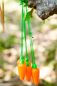 Peter Rabbit birthday party for a sweet first birthday...carrot bubbles to keep the little ones entertained!