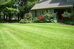A mower is a machine for cutting grass or other plants that grow on the ground. Mowing is the most basic practice for maintaining lawn turf. So maintain your yard as a green paradise by mowing. Sod Installation, Lawn Edging, Unique Gardens, Yard Design, Lawn Care, Growing Vegetables, Lawn And Garden, Lawn Mower, Pergola