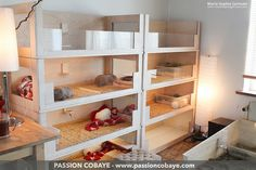 My guinea pigs' habitat (shelf with 8 modules + big playpen) - by Marie-Sophie Germain, www.passioncobaye.com