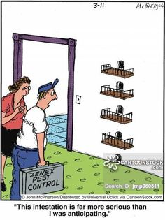 1000 Images About Pest Control Cartoons On Pinterest