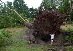 2 dead after winds slam Midwest, Northeast; twister hits NY town - U.S. News