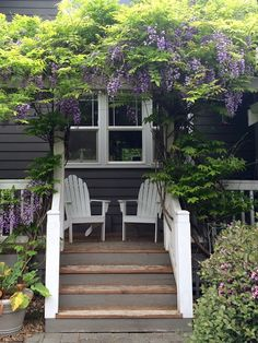 Little Farmstead: Back Porch with Wisteria