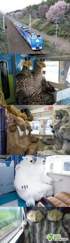 Train that takes people to Asahiyama Zoo in Hokkaido, Japan | both creepy & cute