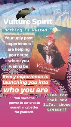 Here is some guidance from the VULTURE. It's such a great lesson — although things appear hideous, beauty always comes from it. Wicca, Pagan, Tarot Card Spreads, Animal Medicine, Animal Totems, Vulture, Oracle Cards, Spirit Guides, Tarot Decks