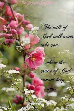 His will...