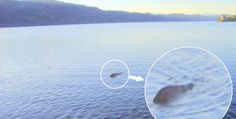 Loch Ness Monster really exists ?