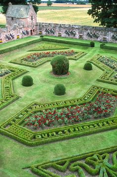 The recreated Italian Renaissance stylle Walled Garden at Edzell Castle, Perthshire, Scotland. Topiary balls with rose borders and latin tex...