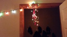 Scout got all tangled up hanging Christmas lights in our bathroom