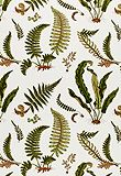 gorgeous bold fern fabric