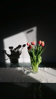 #flowers #sunset #tulips #home