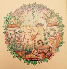 My duck pond from The Enchanted Forest by Johanna Basford done as a colour along with Peta Hewitt on You Tube. In Polychromos pencils.