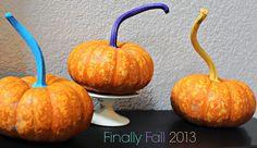 playful pumpkins