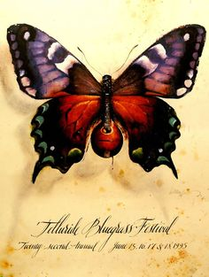 butterfly with a banjo body | bluegrass