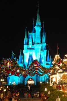"""Go to Disney World for Christmas and New Years! We did~It's magical, loved that they were """"making snow"""" on Main Street at night...as we had just flown out from a blizzard in CLE!"""