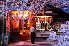8 Best Kyoto Spots for Photographers - Japan Talk