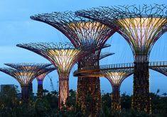 ALLPE Medio Ambiente Blog Medioambiente.org : Los jardines gigantes de la bahía de Singapur abren sus puertas