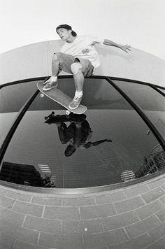 263 Best Skateboarding images in 2019  fe02c35608b