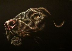 Hey, I found this really awesome Etsy listing at https://www.etsy.com/listing/234368205/art-print-black-dog-drawing-dog-for