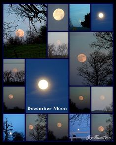 """""""The wall over her bed contained moon photos from every year since she discovered her love of photography. The moon never changed."""" ~ Written on Her Heart by Julie Anne Lindsey, coming March 2013"""