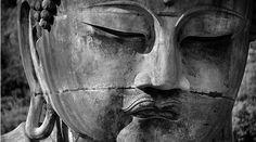 Não Procure o Budismo