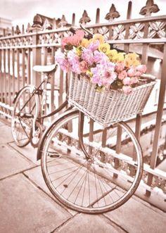 Pretty flowers in the wicker basket of a bike