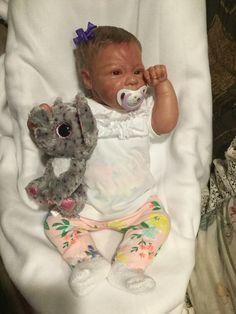 Emiliegh Savannah reborn