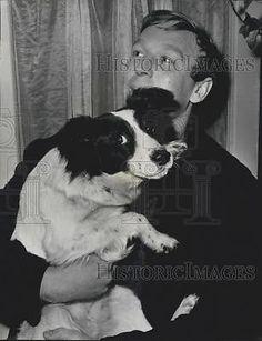 1966 Press Photo mongrel dog named Pickles Finds World Cup 1966 World Cup, Mongrel, Press Photo, Dog Names, Great Britain, Pickles, West Ham, Dogs, British