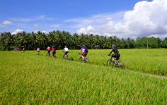 Mekong Delta biking tours 5 days are great biking tours in Mekong delta. Mekong delta biking tours offer biking tours in Vietnam, biking tours Mekong delta