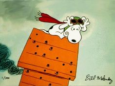 Snoopy is not too happy about the Red Baron putting those holes in his doghouse.