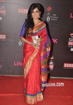 Monali Thakur at the 20th Annual Life Ok Screen Awards 2014