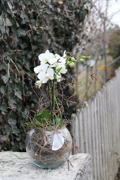 die besten 25 orchideen im glas ideen auf pinterest hohe glasvasen hohe bodenvasen und. Black Bedroom Furniture Sets. Home Design Ideas