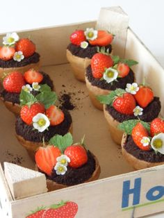 Strawberry and dark chocolate plant pots | Rachel Stonehouse