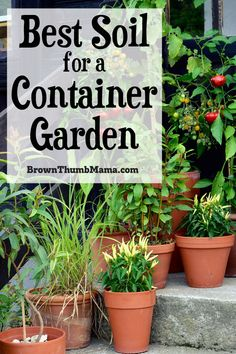 It's important to choose the right soil for your container garden, so your vegetables will grow well. Because the plants are growing in a confined space, you want to be sure the soil is the very best