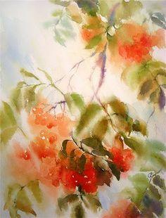 Watercolors by Maria Stezhko (Акварели Марии Стежко): Ashberry