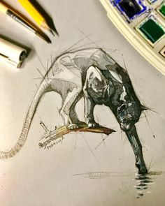 Psdelux is a pencil sketch artist based in Tatabánya, Hungary. He usually draws animal sketches. Psdelux also makes digital drawings. Animal Sketches, Animal Drawings, Cool Drawings, Drawing Sketches, Drawn Art, Animal Tattoos, Art Sketchbook, Cat Art, Art Inspo