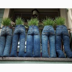 Plant pants!  * well THIS is one way to make a balconey private
